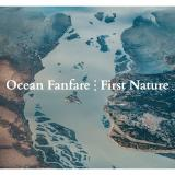 New album from Ocean Fanfare